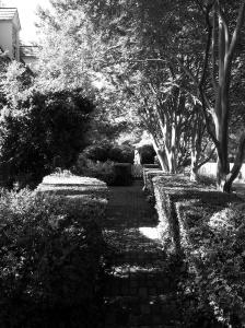 rosegarden pics 2